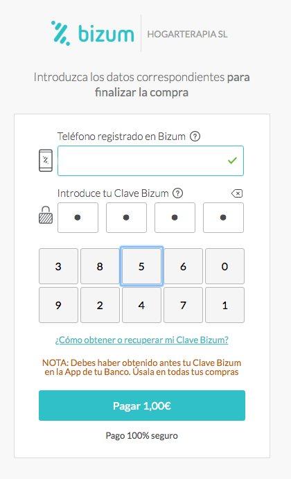 Pago con Bizum Comercio electrónico